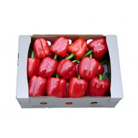 빨강파프리카(특/5kg/1박스)