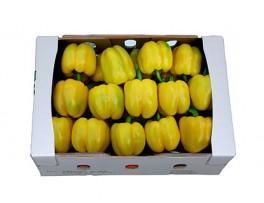 노랑파프리카(특/5kg/1박스)